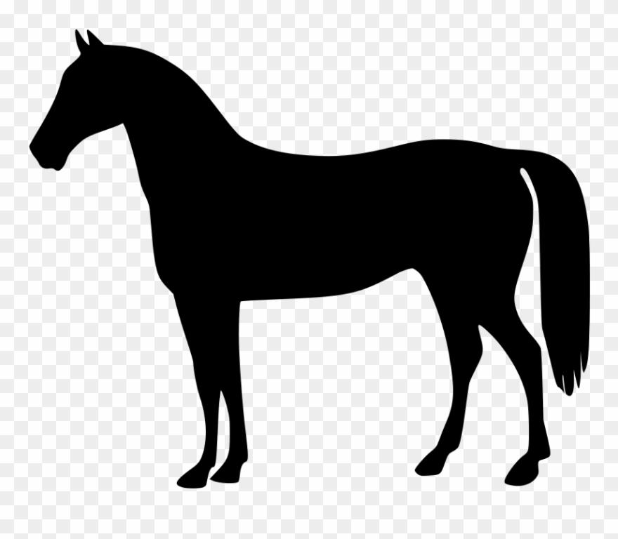 Clipart horses horse.
