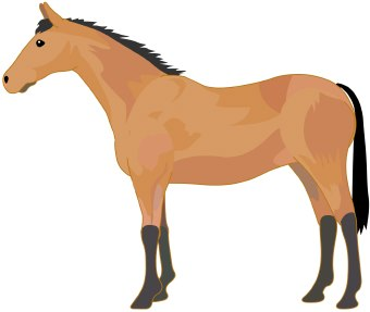 Standing horse clipart.