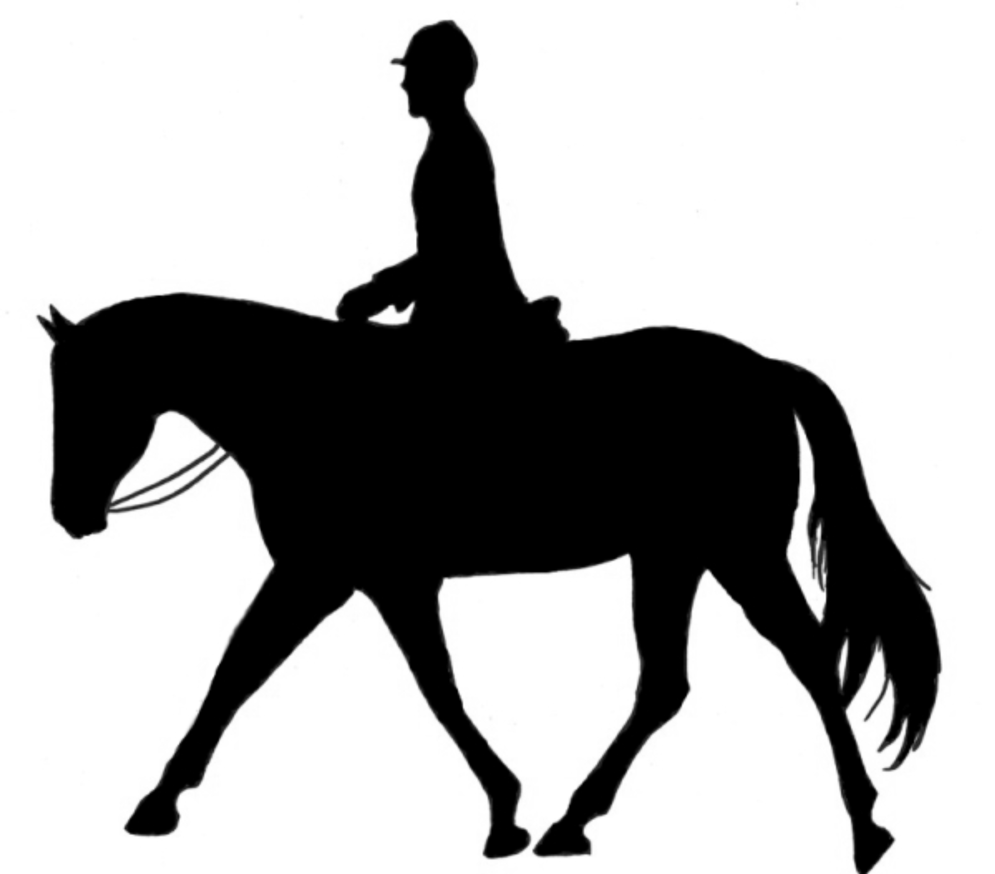 Free horse western.