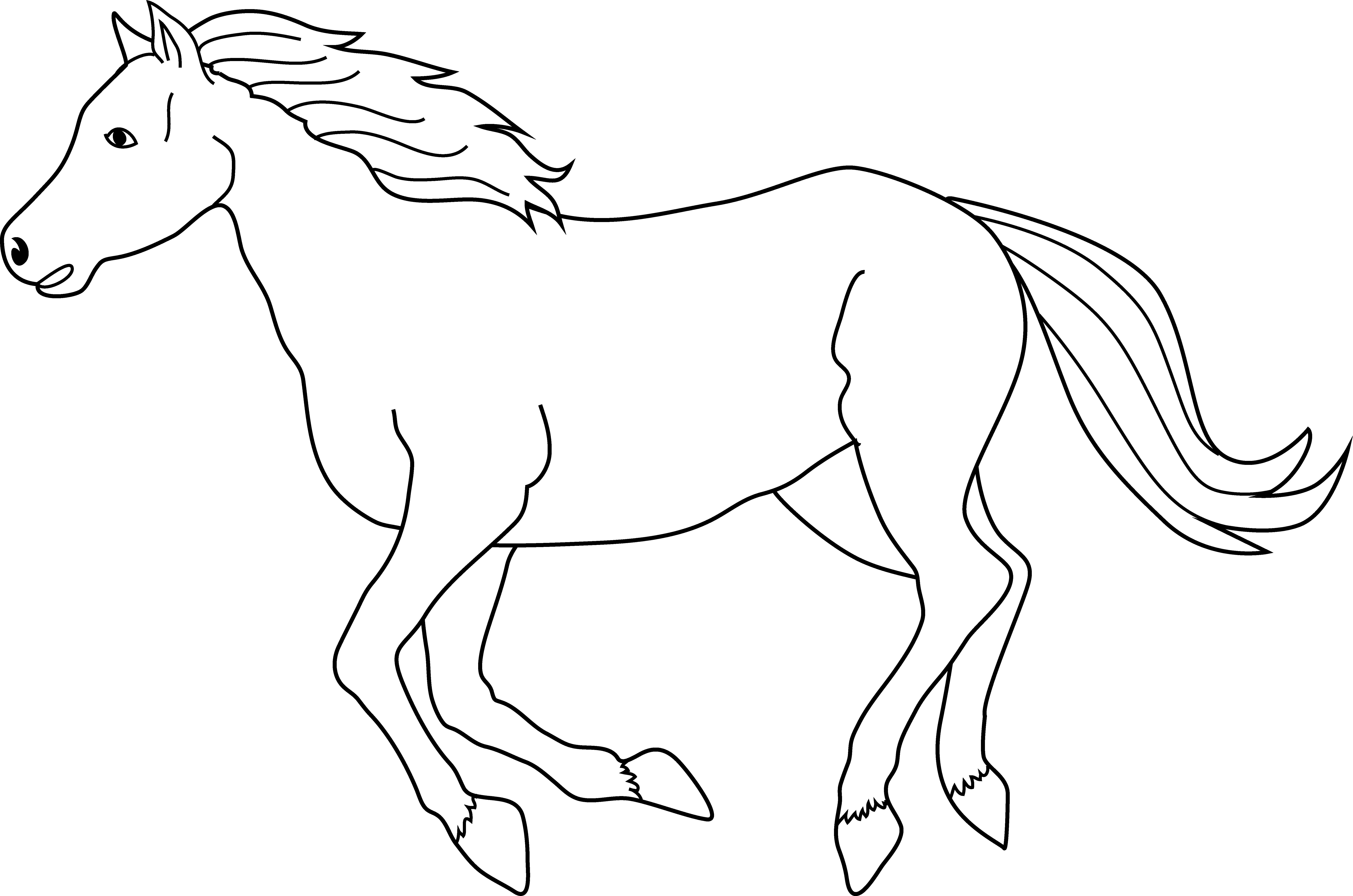 Free running horse.