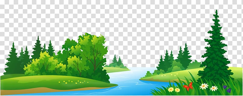 forest background clipart transparent
