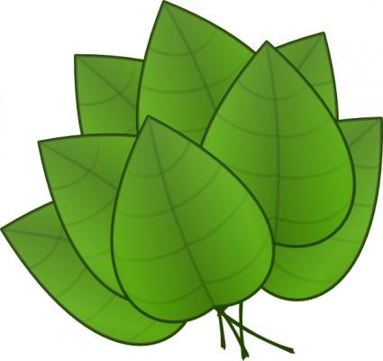 Leaf animated leaves.