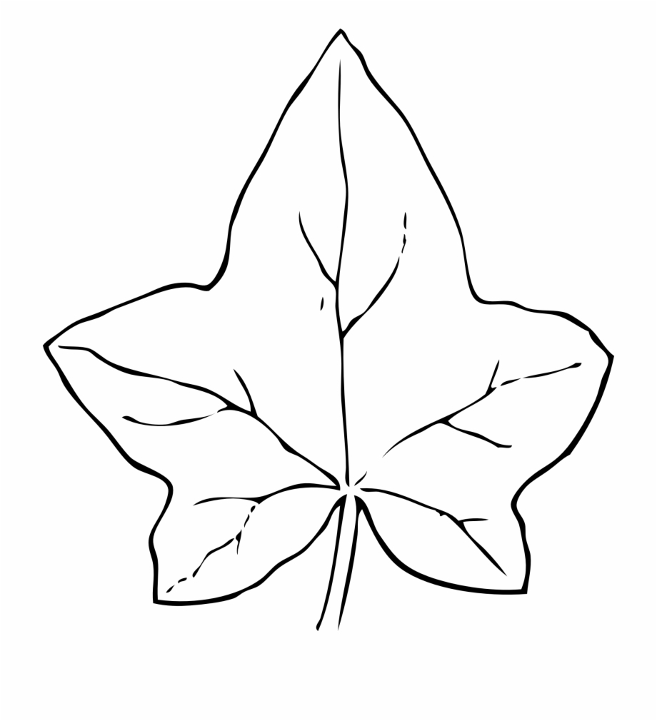 Leaves Black And White Fall Leaves Clipart Black And