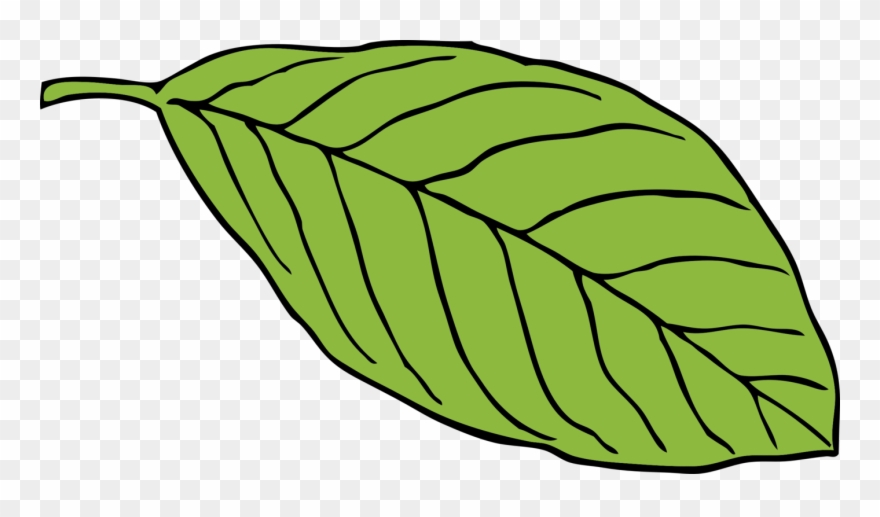 Leaves clipart printable.