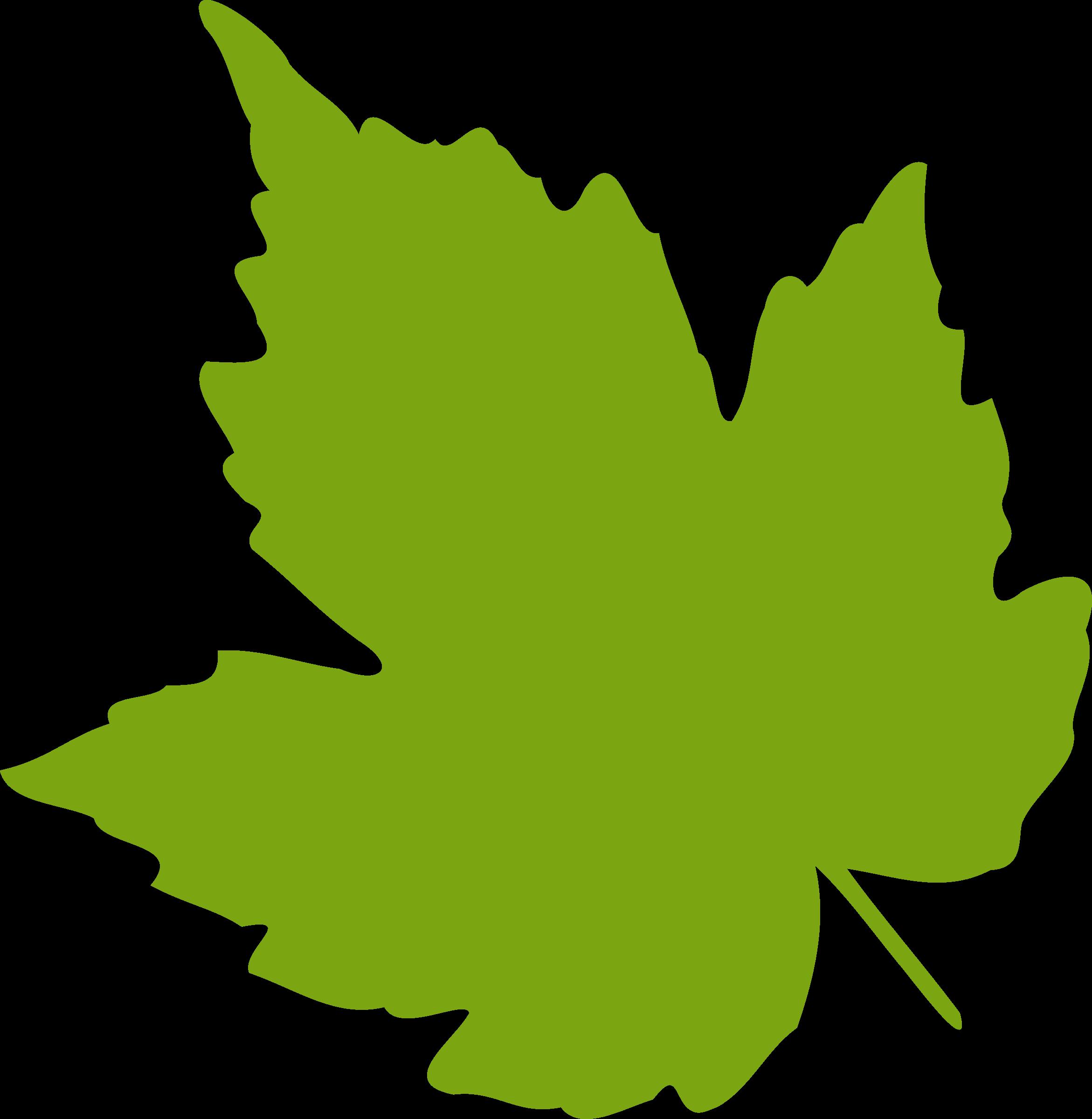 Leaves clipart cartoon.