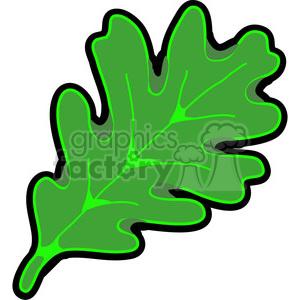 Green white oak.