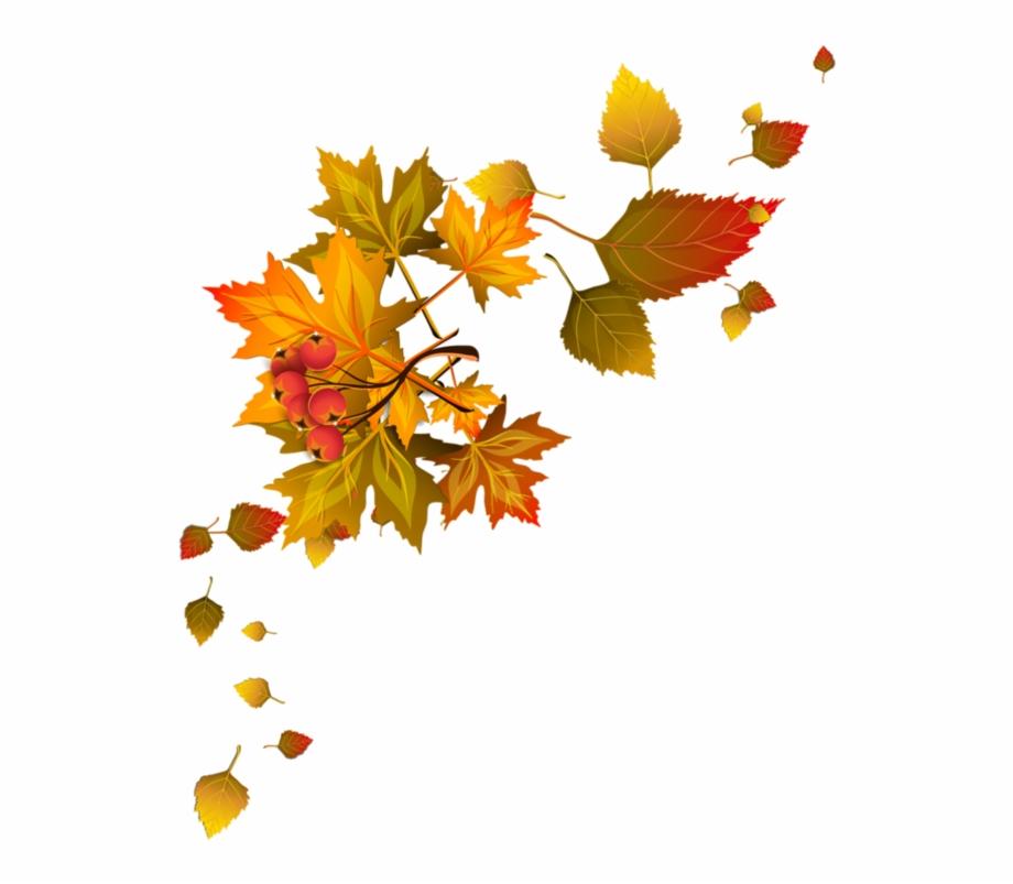 Bordures,tubes Coins,corners Autumn Leaf Color, Autumn