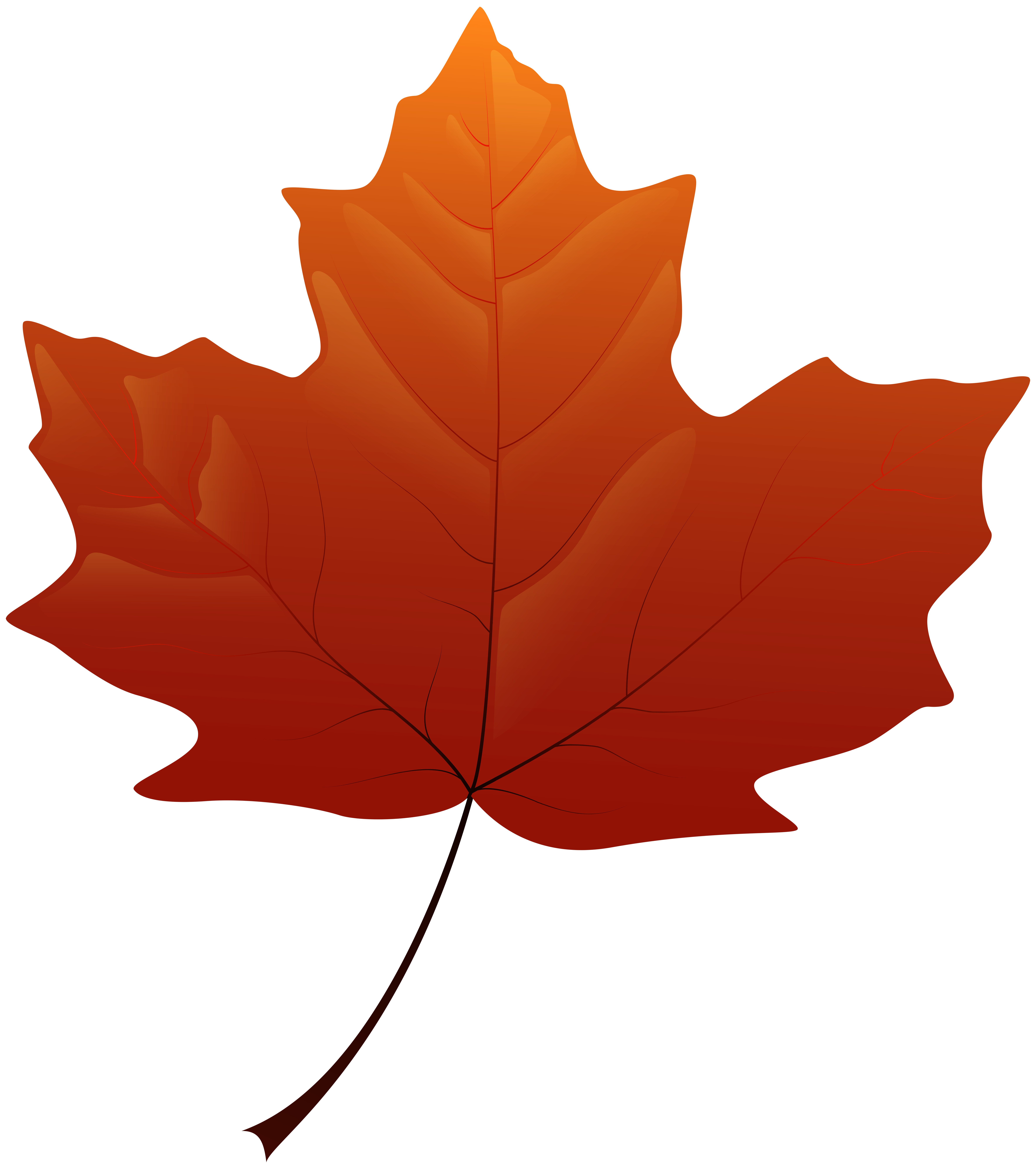 Autumn leaf png.