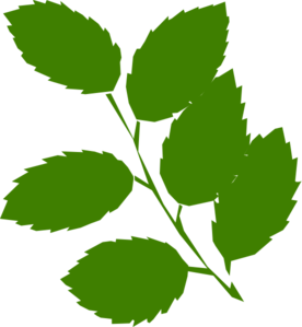 Green Leaves Clip Art at Clker