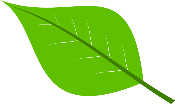 Free download Large Green Leaves Clipart for your creation