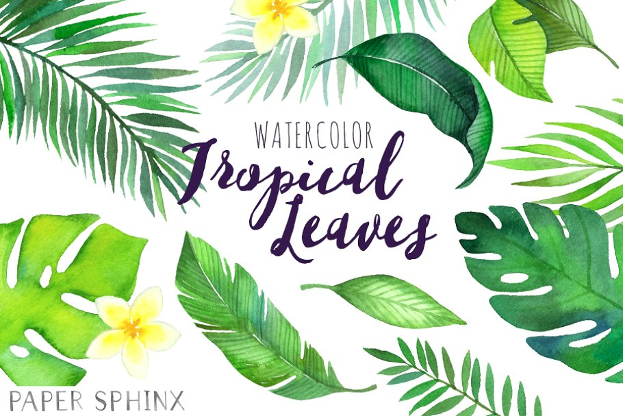 Watercolor tropical leaves.