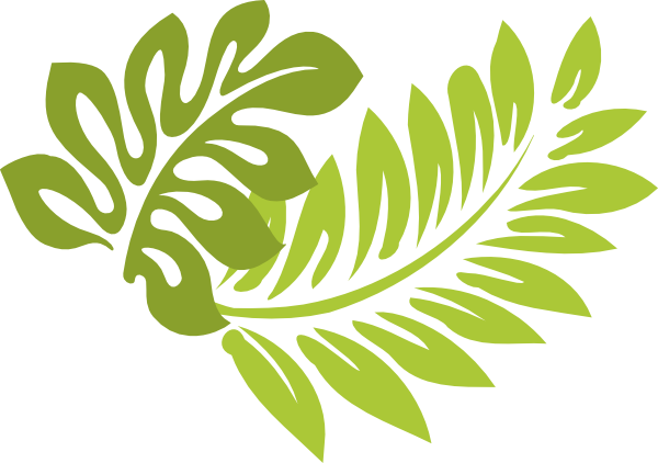 Free tropical leaf.