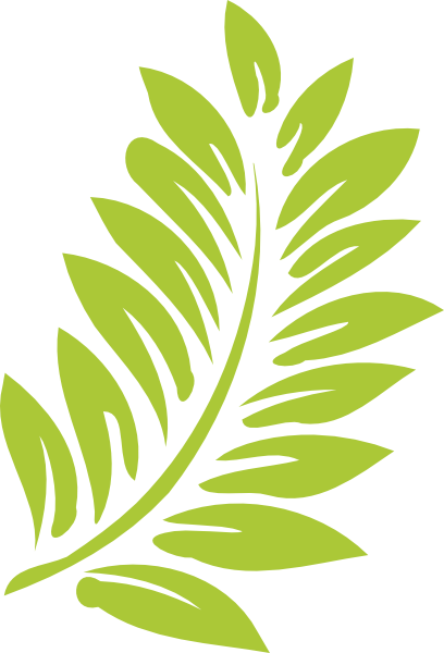 Leaves Hibiscus leaf clip art at vector clip art png