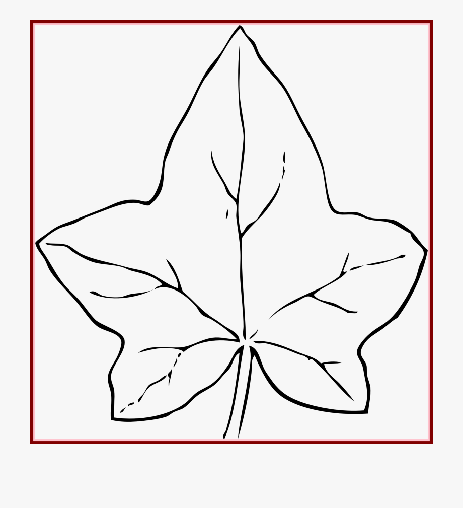 Clipart Leaves Black And White