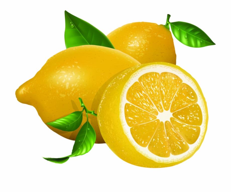 Lemon euclidean vector.