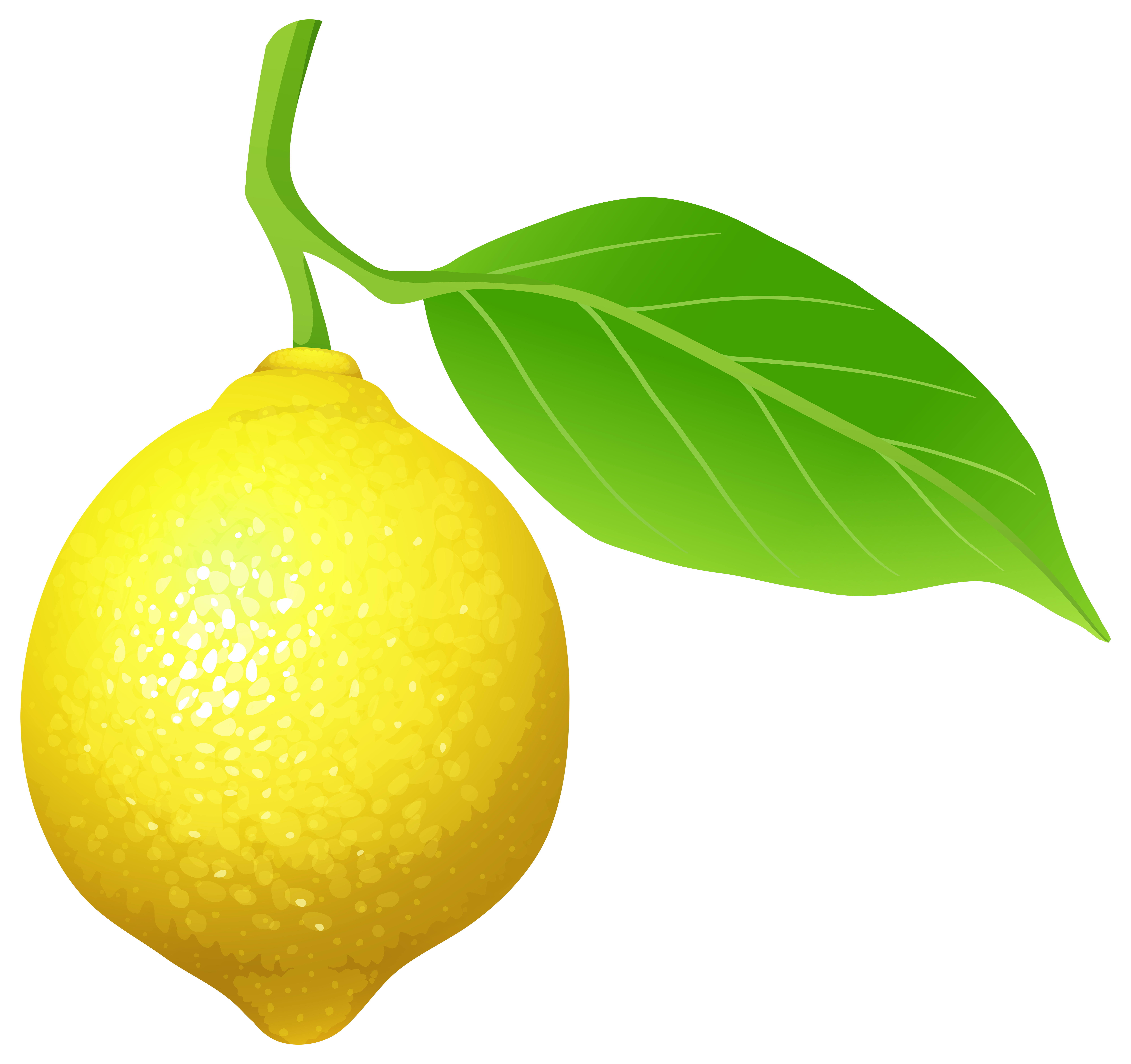 Garland clipart lemon.