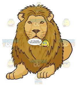 Male lion lying.