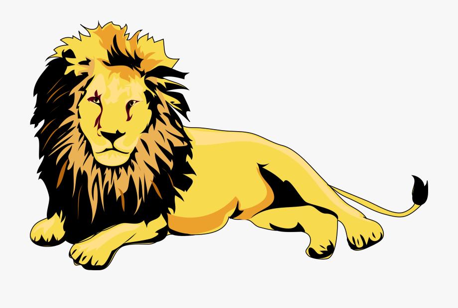 Download transparent lion.