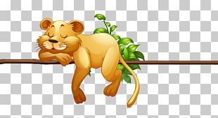 Sleeping lions png.