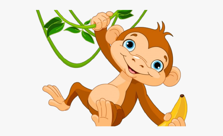 Year the monkey.