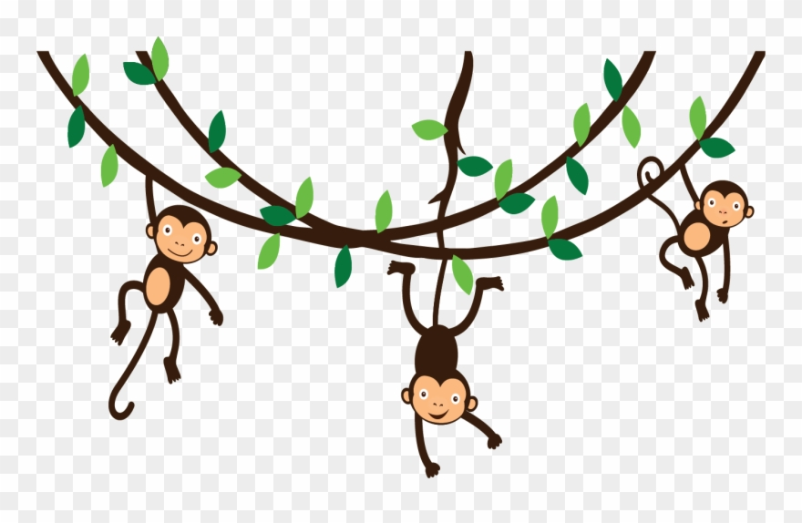Collection monkey hanging.