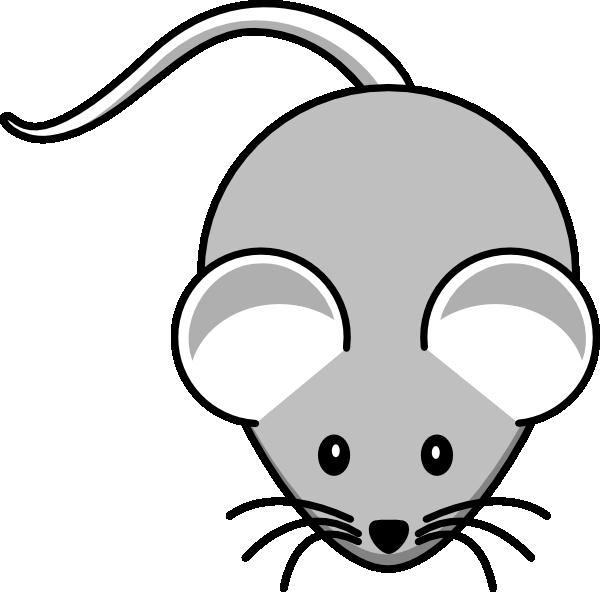 Light gray mouse.
