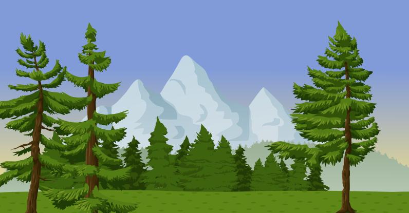 Pine mountain tree.