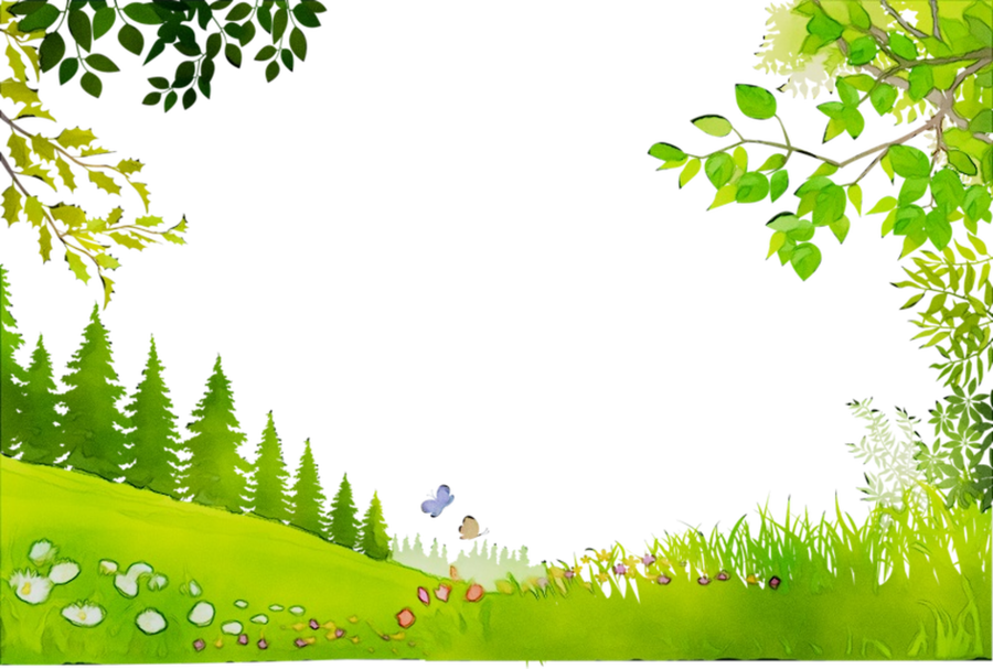 forest background clipart summer