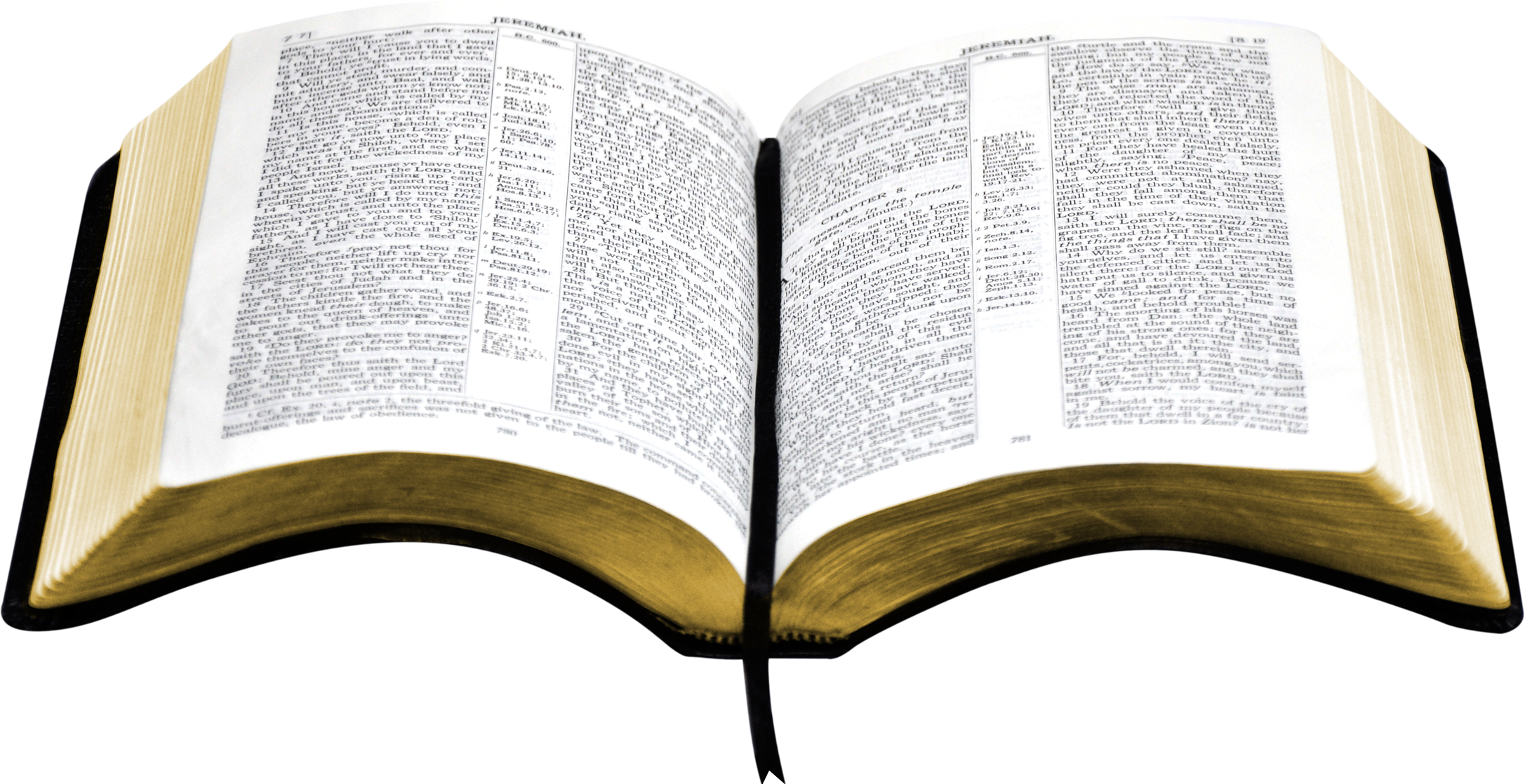 Open bible clipart transparent.