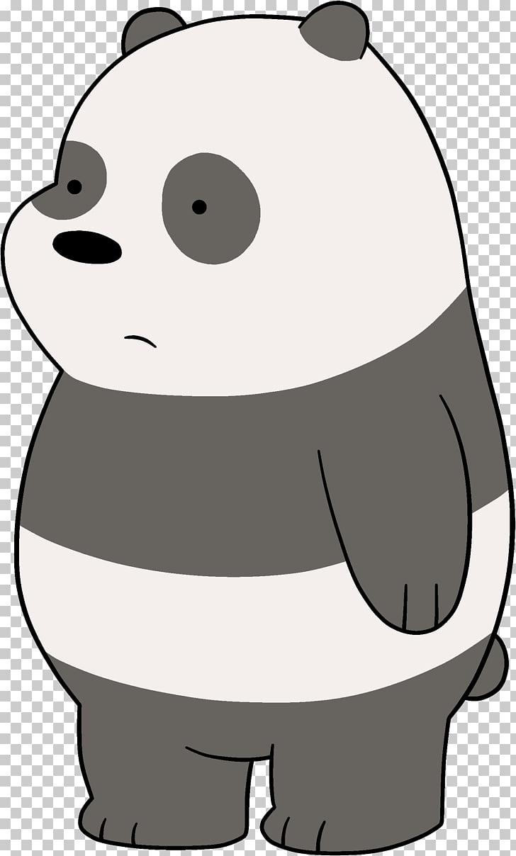 Giant panda polar.