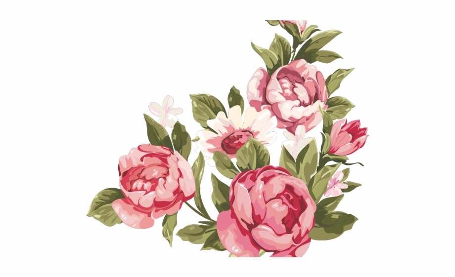 Peony Clipart Floral Accent Transparent Background Rose