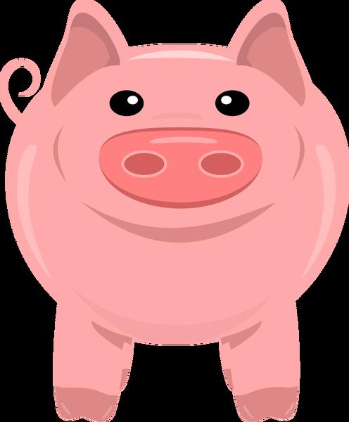 Domestic pig clip.