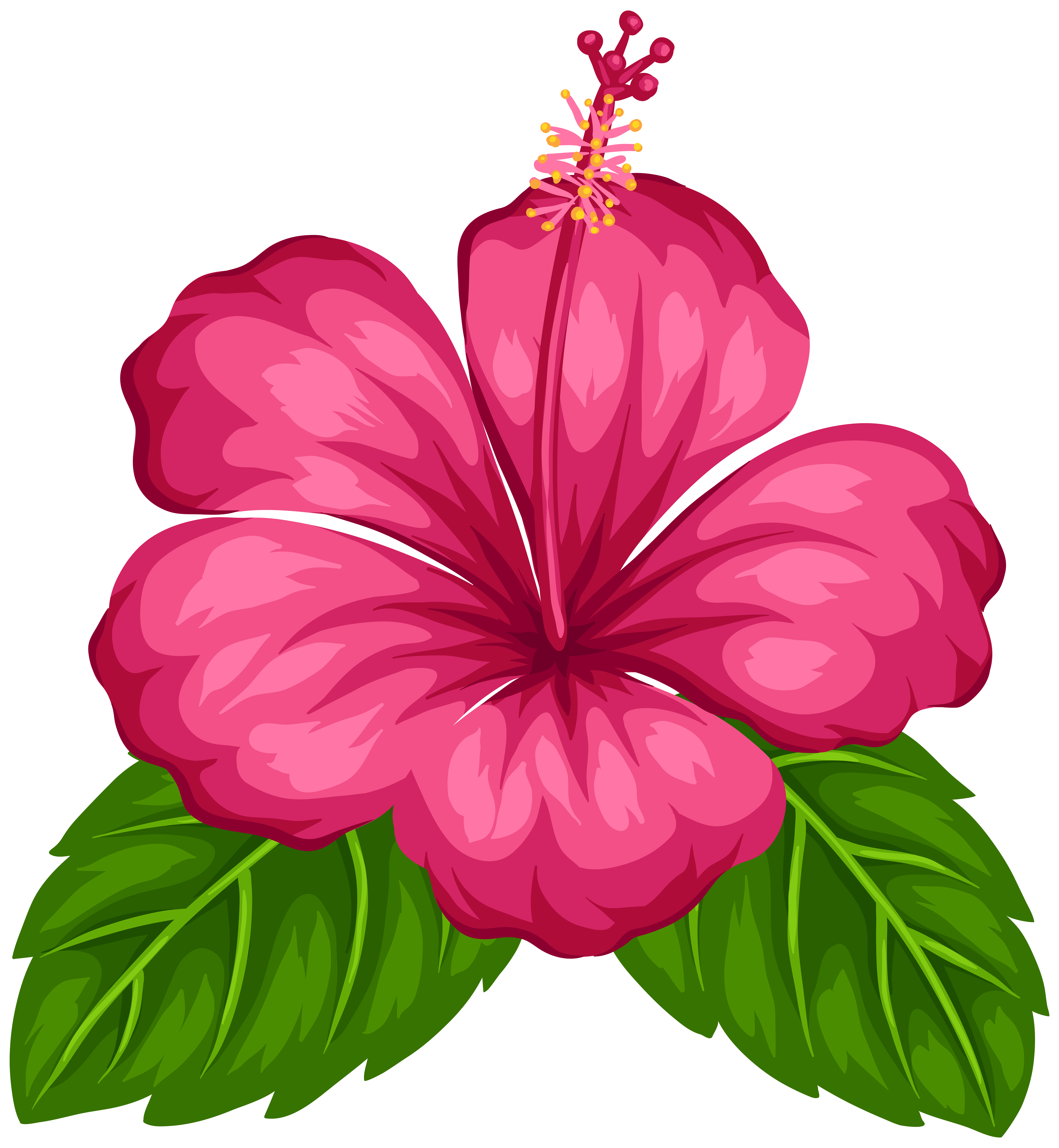 Exotic flower png.