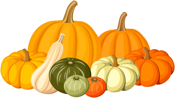 Autumn pumpkins png.