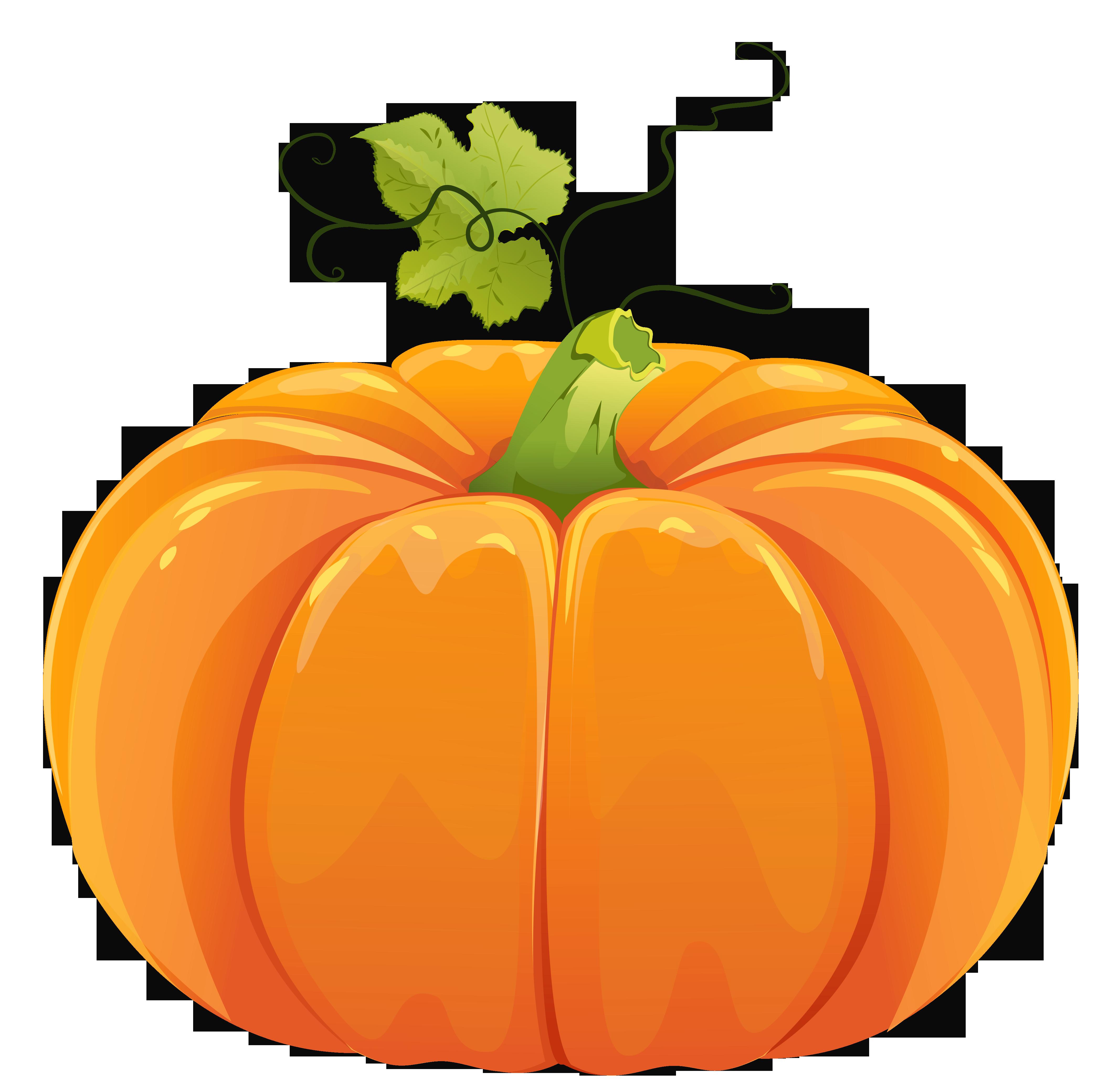 Autumn pumpkin clipart.