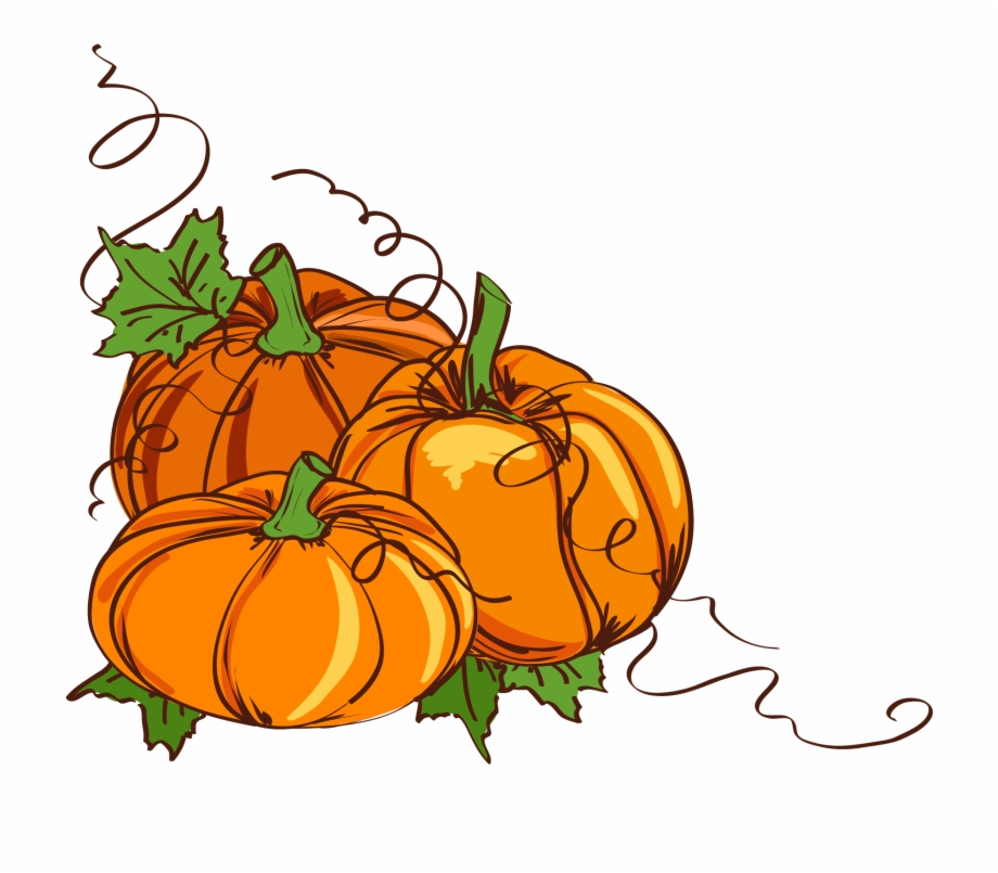 Pumpkin thanksgiving transparent.