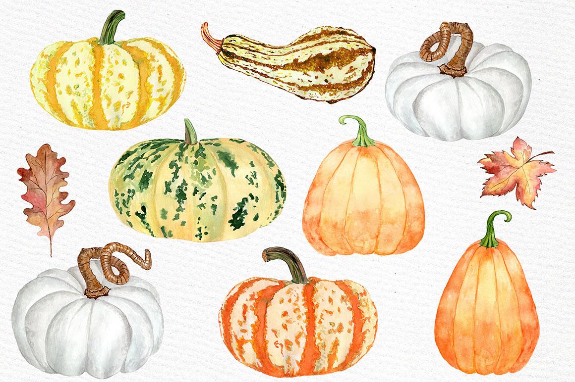 Watercolor pumpkin clipart.