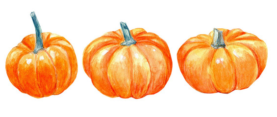 Pumpkins watercolor clipart harvest fall autumn Halloween