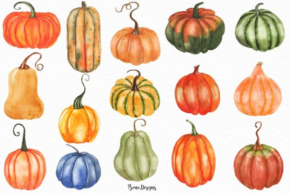 Watercolor Pumpkin Clipart Set