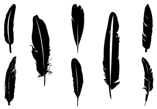 Feather silhouette vector.