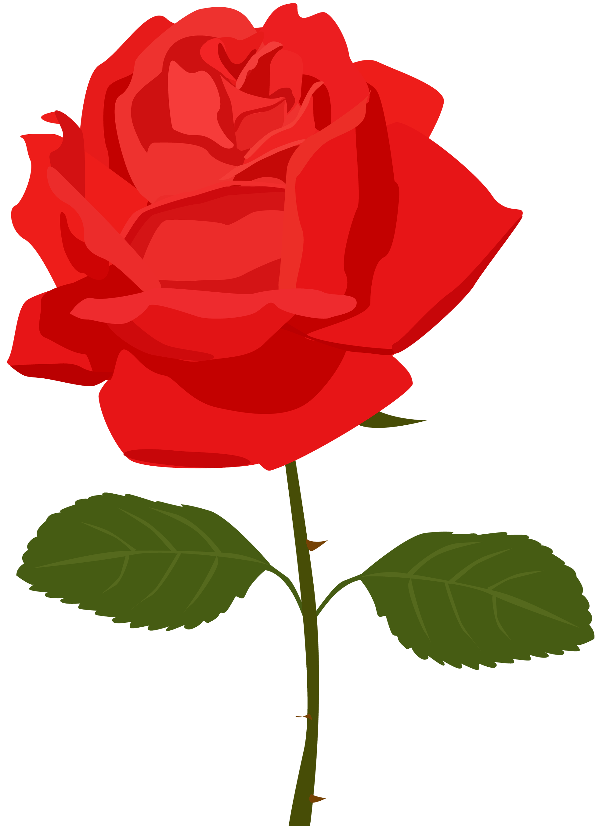 Cartoon roses pictures.