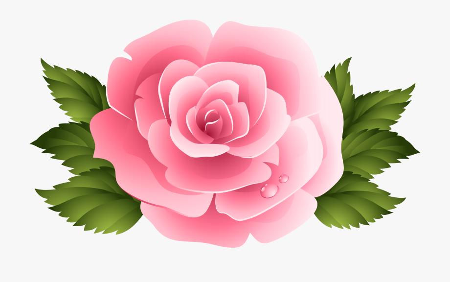 Flower clipart rose.