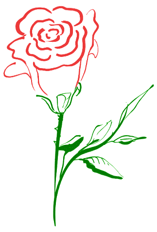 Free free rose.
