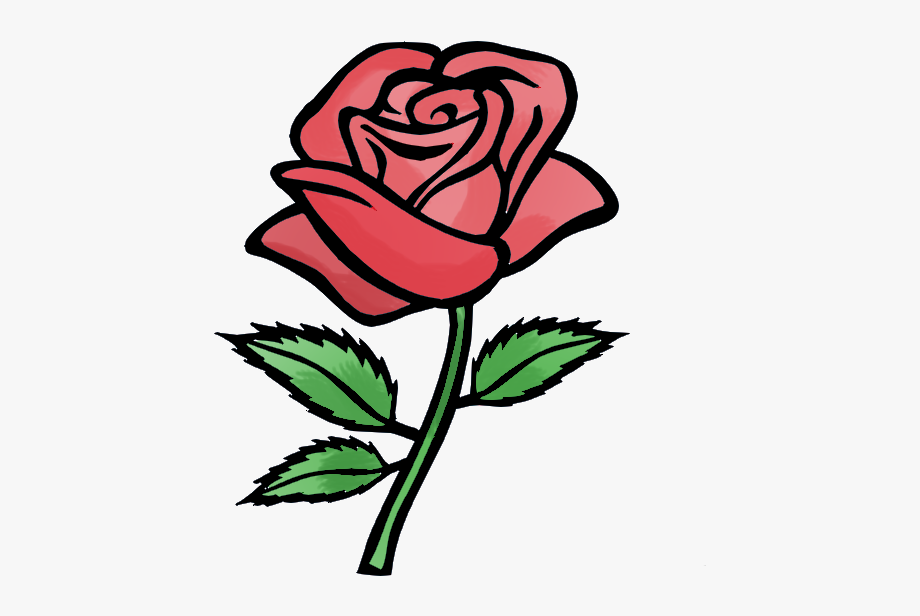 Rose flower animation.