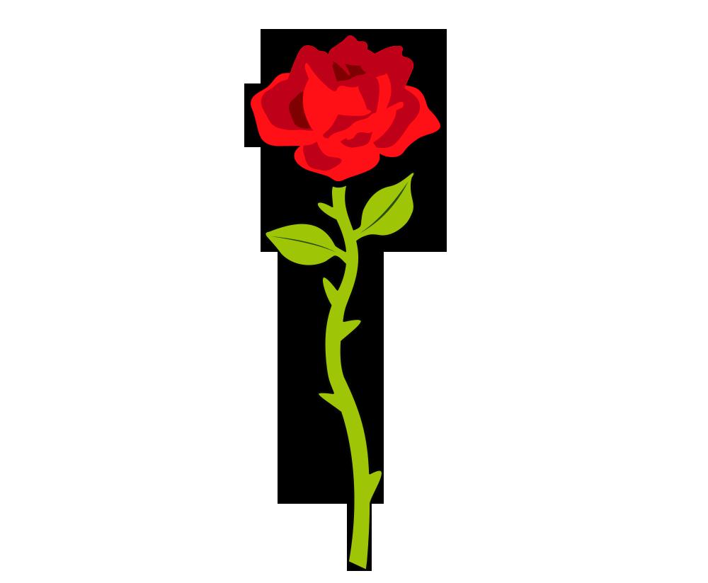 Single rose png.