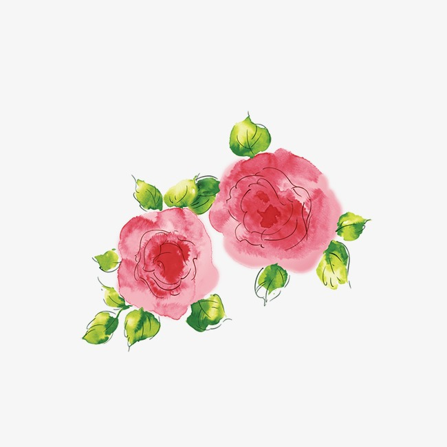 Watercolor rose clipart.