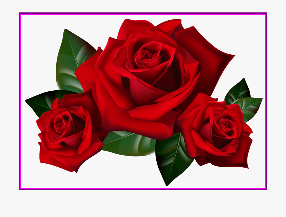 Appealing bouquet frame.