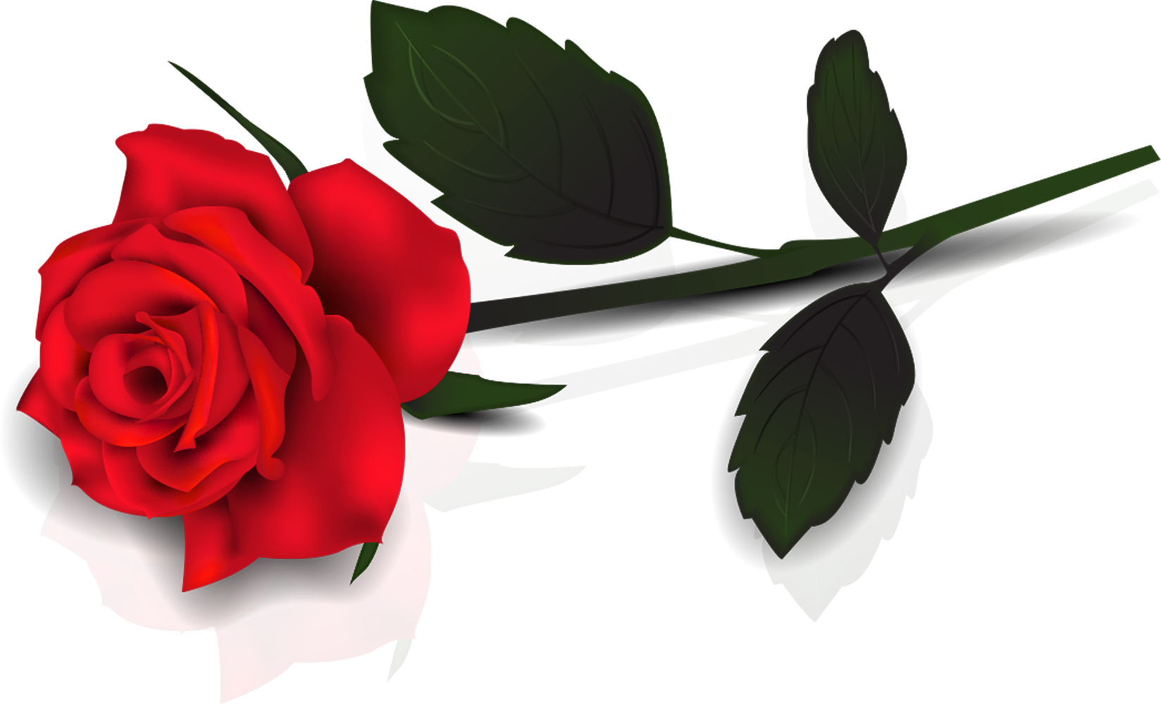Free Single Rose Cliparts, Download Free Clip Art, Free Clip