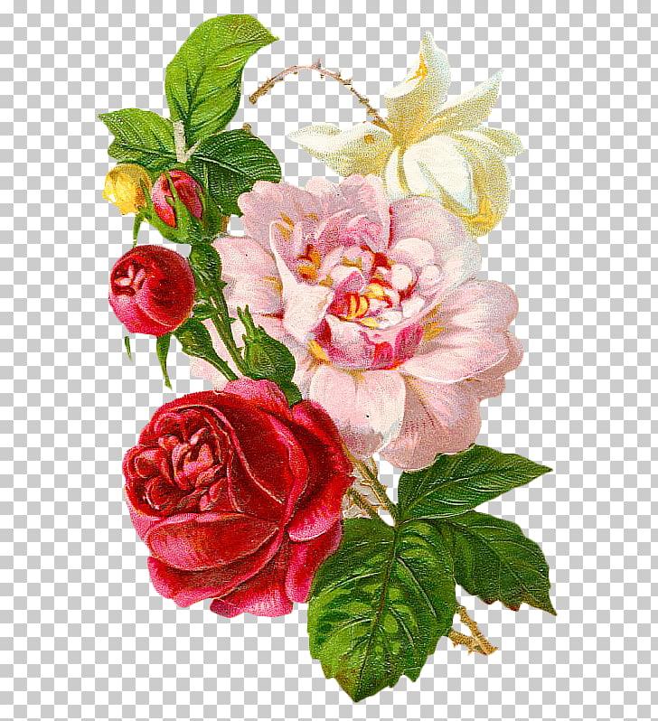 Victorian era flower.