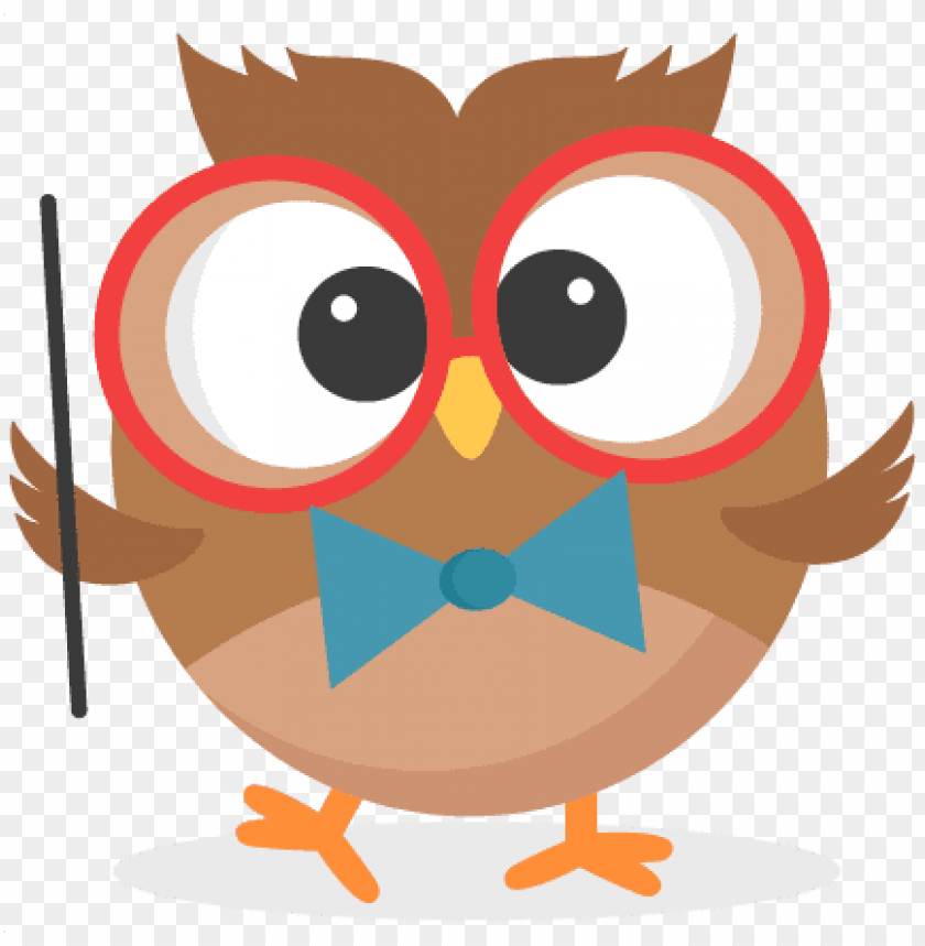 owl clipart transparent background